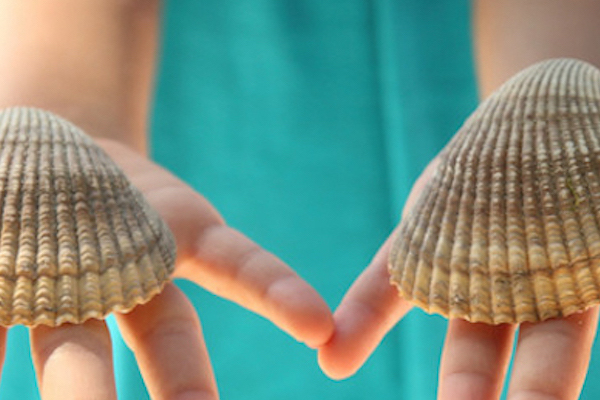 ella-shells-layer-slider-mobile